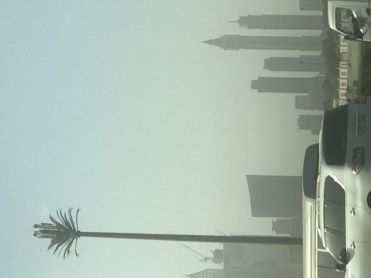Palm Antenna